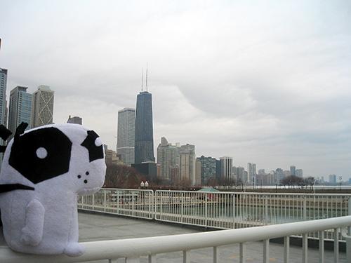 Chicago.poncho