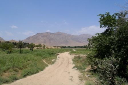 Framed AfghaniDan COMMANDO 8b