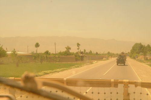 Framed Afghan Fox CHEMTAL 1