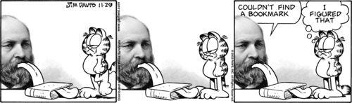 Garfield vs Garfield 36