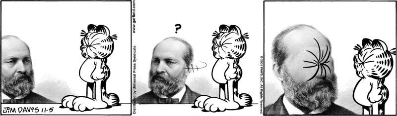 Garfield vs Garfield 28