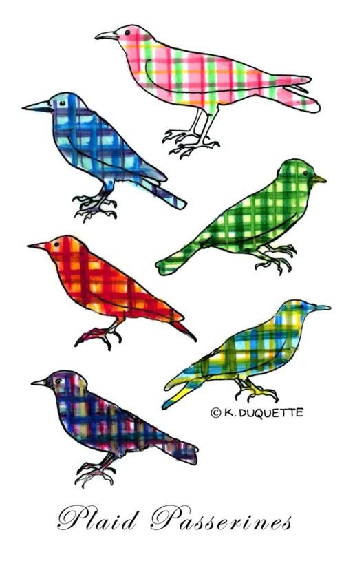 Image_1_birds_plaids
