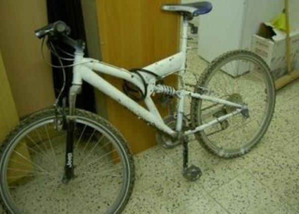 Framed_kevin_bike_15