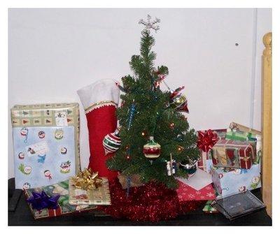 Framedgibbsiraqchristmastree_3