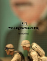 IED Book Cover